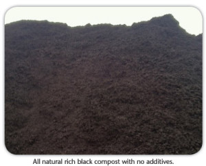 natural-compost (1)